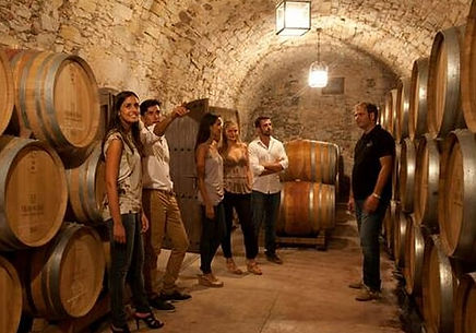 PRIVATE GUIDED MONTSERRAT AND CAVA TOUR