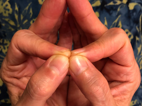 Mudra of the Month: Intuition