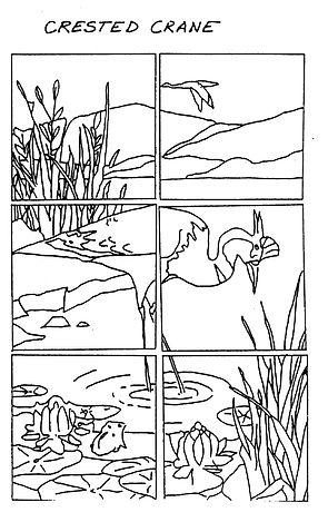 Crested Crane004.jpg