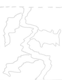 Kelp B.jpg