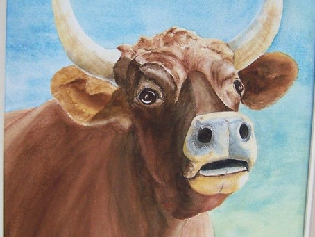 Oxen - The Humble Servant of Light...