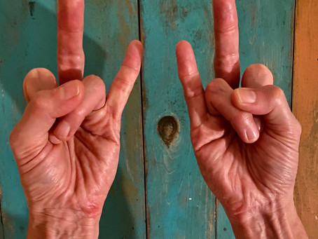 Mudra of the Month:  Everlasting Youth & Vitality
