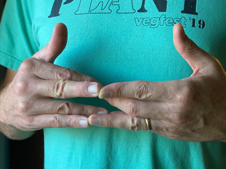 Mudra of the Month:  Surbhi Mudra - Balancing Polarities