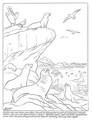 Coloring Pages 4.jpg
