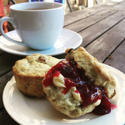 These are the scones I made for my final pitch to the judges for the #CallingAllDreamers competition