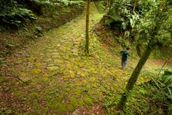 Calçada do Lorena - Serra Velha
