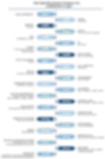 Timeline (rev)-01.png