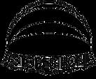 Logo sfond.png