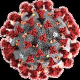 1200px-2019-nCoV-CDC-233122.png