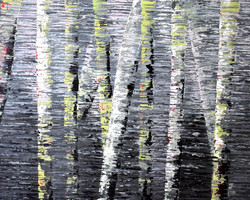 Birch tree Reflection #3