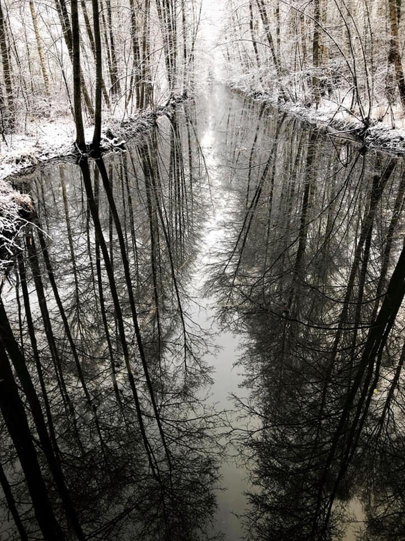 waterreflectafterPS.jpg