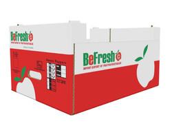befresh carton