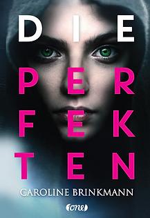 Die Perfekten Cover