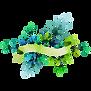 Floral Placa 1