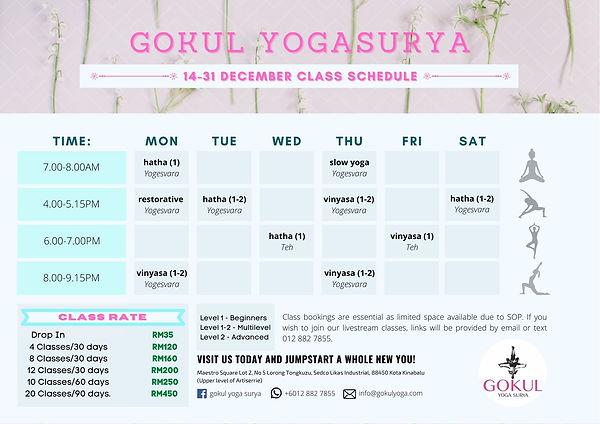 GYS Class Schedule.jpg