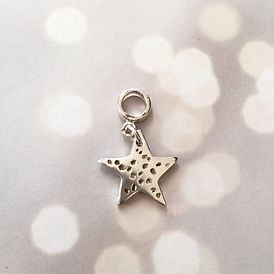 Loved one's ashes in a silver star