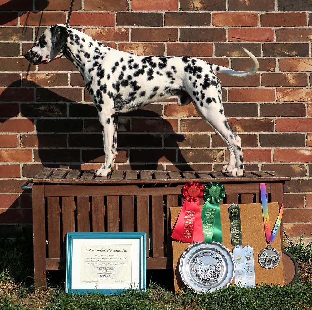 Capra stack after getting triathlete award