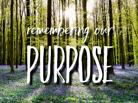 Remembering Our Purpose