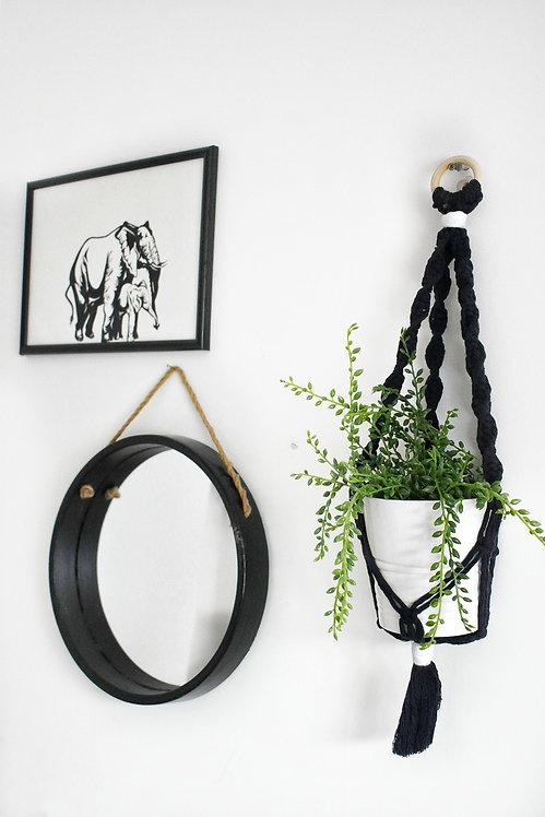 Spiral plant hanger