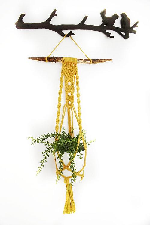 Mesmerise Plant Hanger