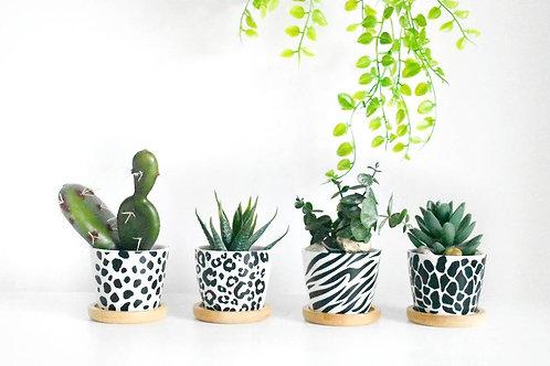 Individual Animal Print Mini Planter | Mini Pun Pot | Scandi Boho Flower Pot