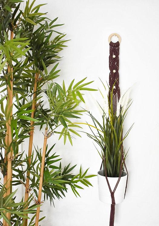 Dream Plant Hanger
