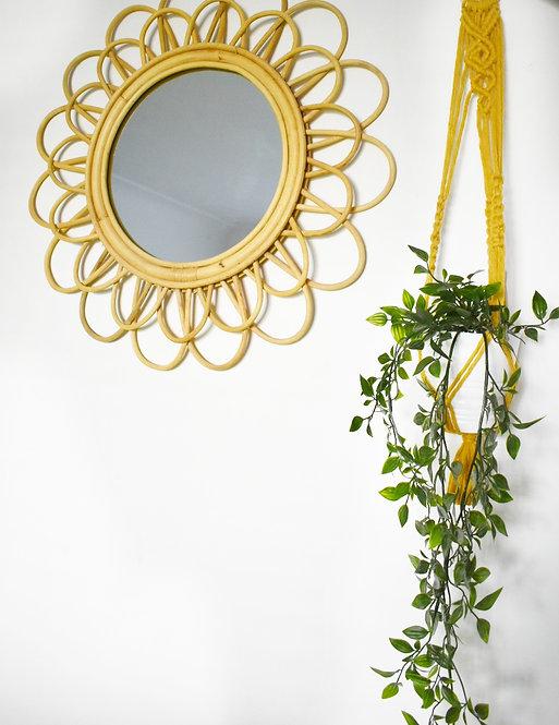Teardrop Plant Hanger