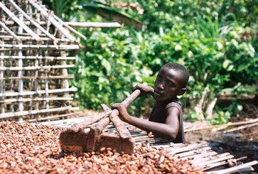 12.cacao_.mailperdiritti.jpg