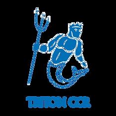Logo TRITON HD.png