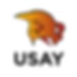 USAY logo.png