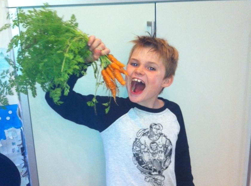 carrots_29072014_840_623_100.jpg