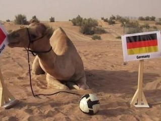 World Cup — through the eyes of kids and camels
