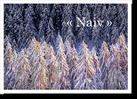 P9005 - Naiv
