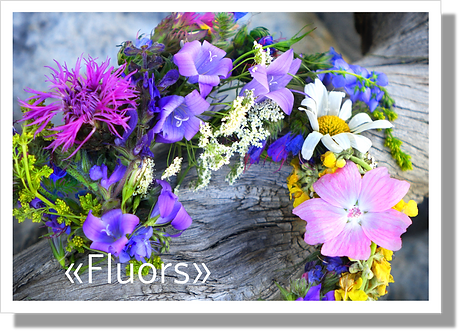 P3033 - Fluors