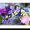 Thumbnail: 3033 - Cranz da Fluors
