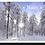 Thumbnail: P9006 - Naiv