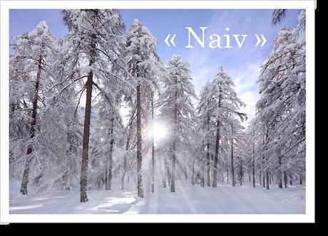 P9006 - Naiv