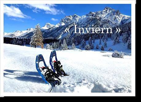P9007 - Inviern