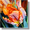 Thumbnail: 1521 - Tulpe orange