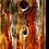 Thumbnail: 4020 - Tamangur