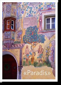 P5011 - Paradis