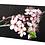 Thumbnail: 1553 - Blüte