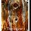 Thumbnail: P4020 - Tamangur