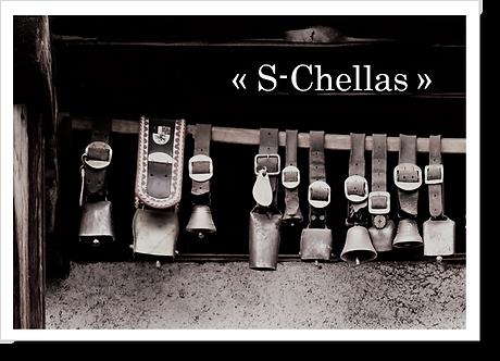 P4011 - S-Chellas