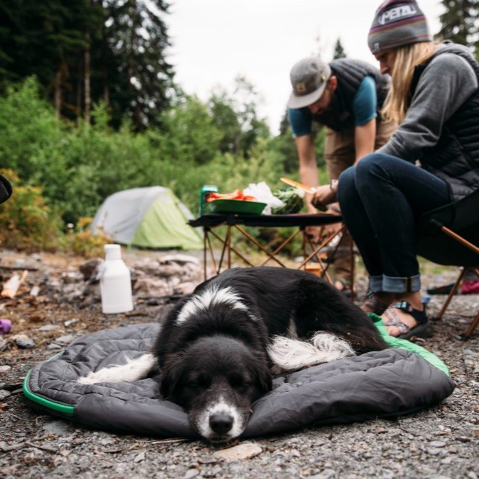 Dog laying on a sleeping bag at a campsite