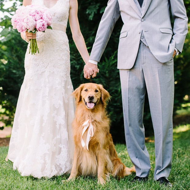 Married couple with their golden retriever at their wedding