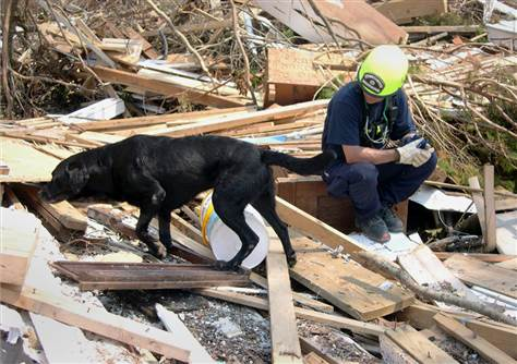 Jake, the black Labrador retriever, searching through the rubble and debris of 9/11