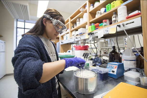 A student performs a chemistry experiment at a lab bench