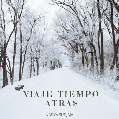 Viaje Tiempo Atras Album Art.png