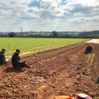 farmers at work at farringtons farm